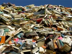 Literatur Berg