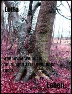 LOTTA-SUCHT-LEBEN