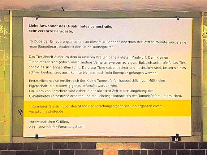 Tunnelpfeifer Berlin